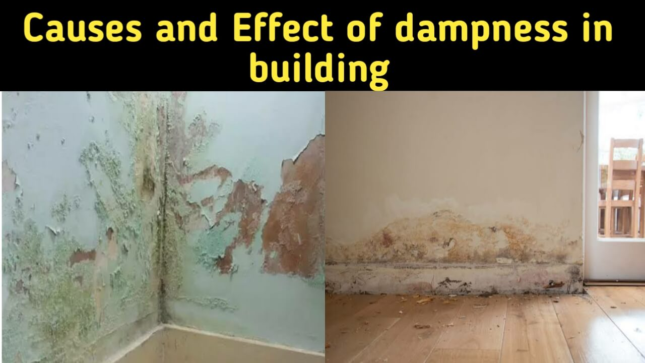 causes and effect of dampness