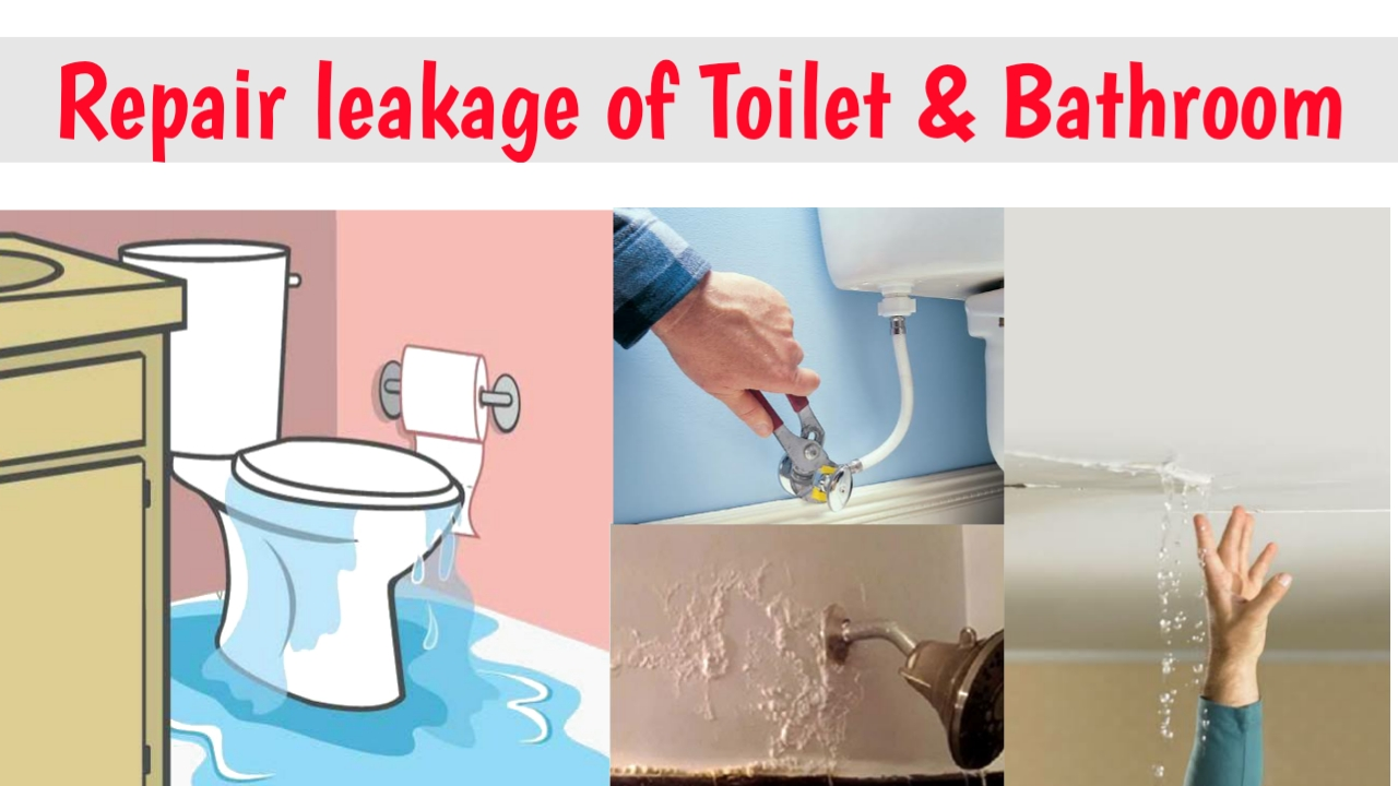 repair leakage of toilet and bathrooms